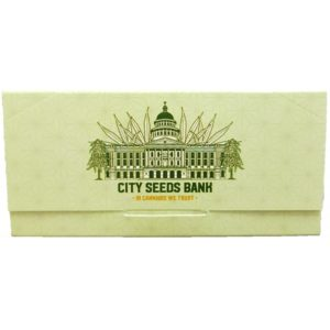 Rolling Papers - Ultra Thin - Green