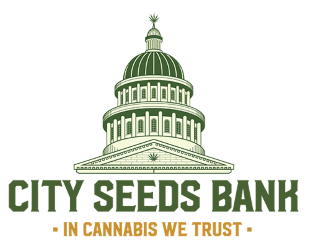 City Seeds Bank ישראל
